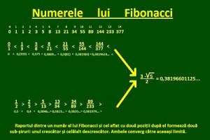 Sistemul Fibonacci – calcul matematic