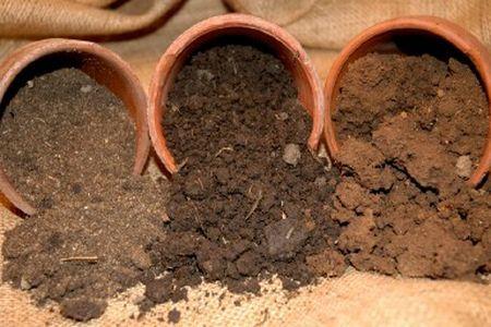 Tipurile de soluri prezente in Romania