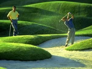 Pariurile live pe jocul de golf